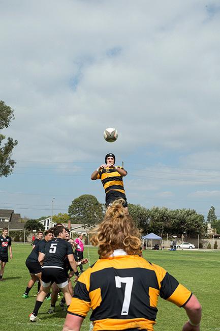 http://dannyzapalac.com/files/gimgs/103_rugbythrowin3892.jpg